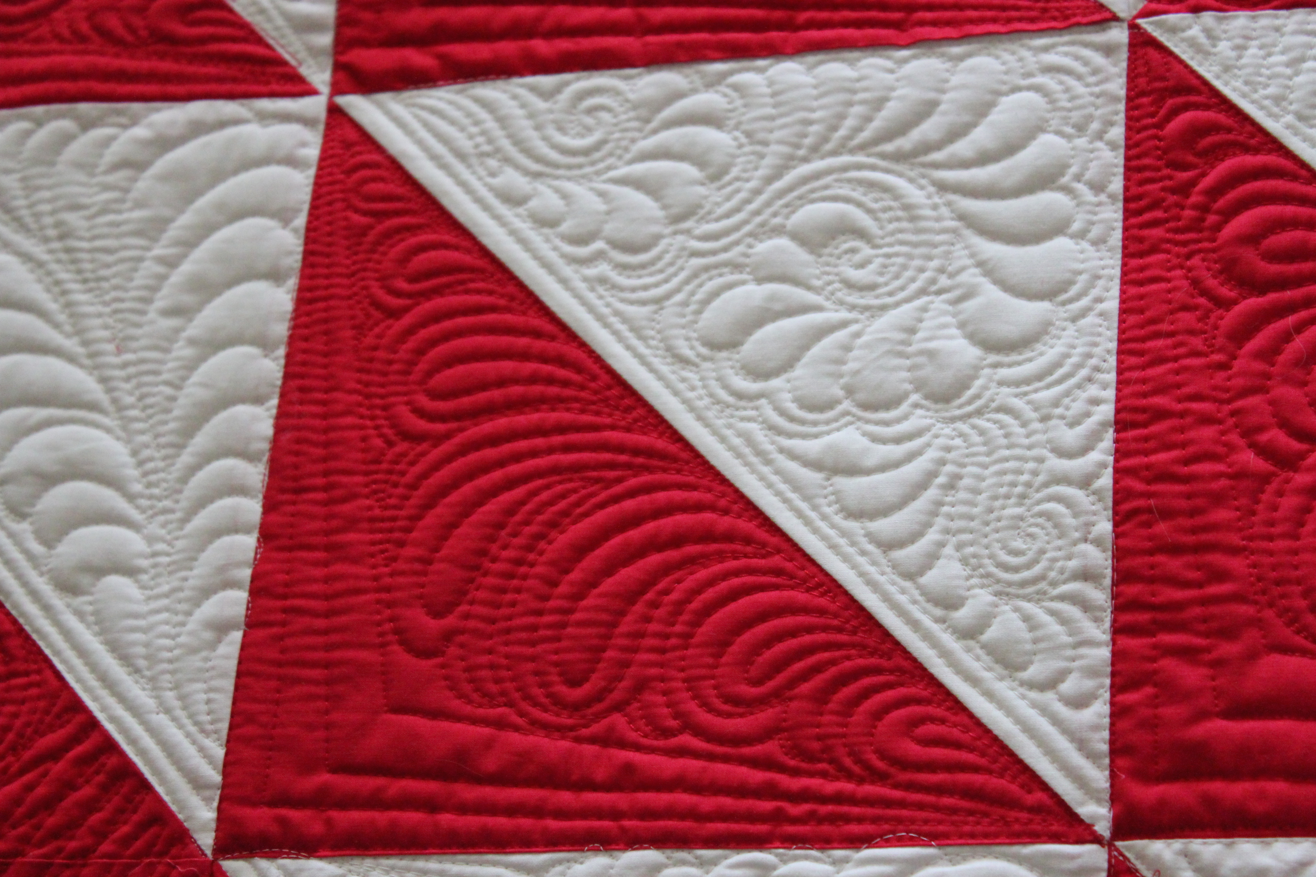 Quilting Is My Therapy The Paisley Feather Machine Quilting Video ... : feather quilting designs - Adamdwight.com