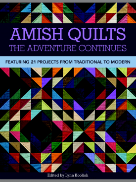 Amish Quilts- The Adventure Continues
